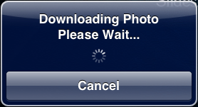 Photo Slideshow Director HD, downloading photos from picasa