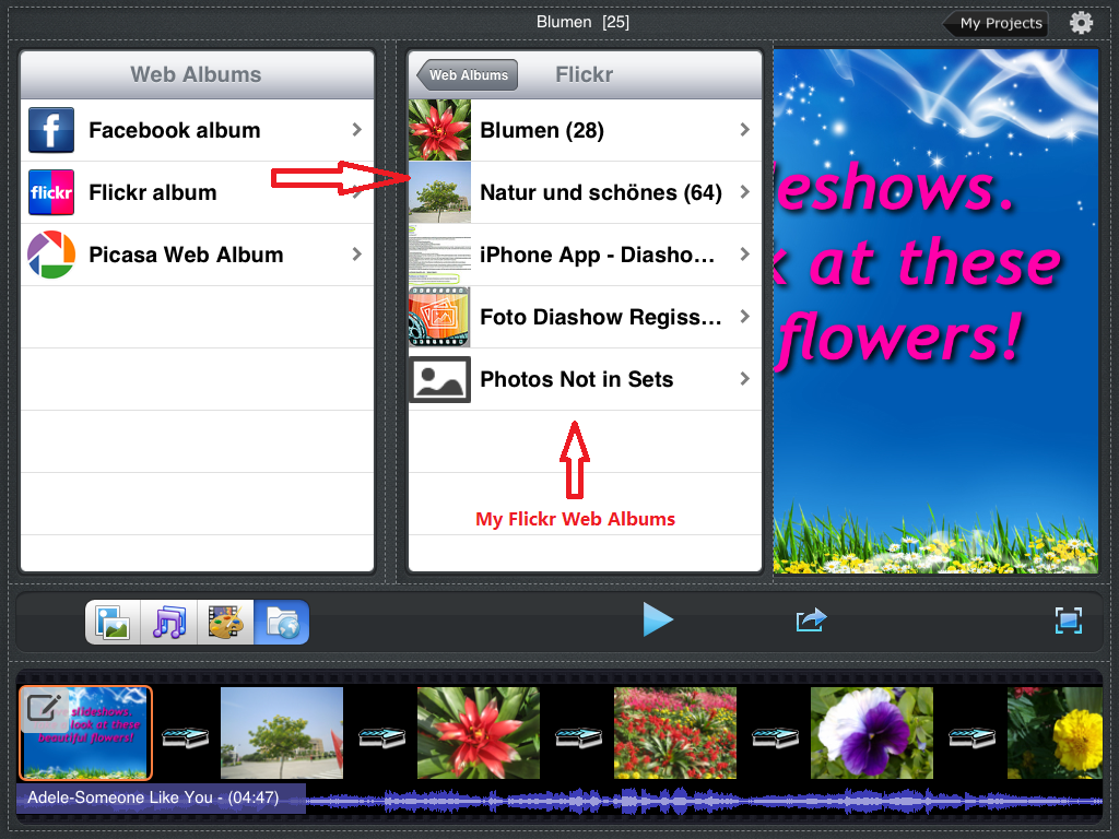 Photo Slideshow Director HD, flickr web albums